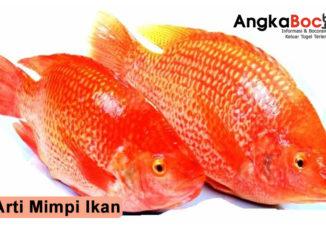inilah kumpulan arti dari mimpi seputar ikan